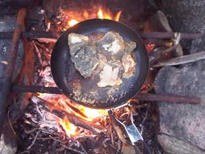 Fish in a pan 1st night Cirrus