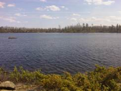 View burn area south on Lake Two 713