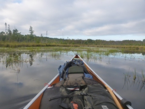 Paddling through swamp to Wood Lake Takeout. By TMI. All rights reserved.