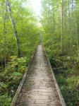 Wooden bridge on 180-rod portage into Wood. By TMI, all rights reserved